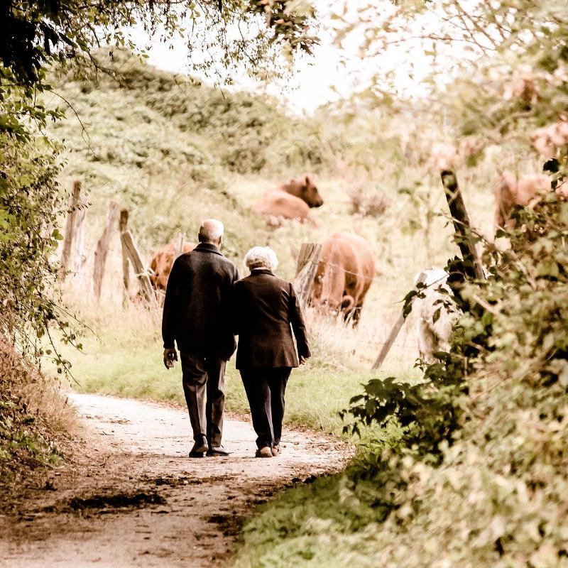 ¿Pueden salir a la calle las Personas con Alzheimer?